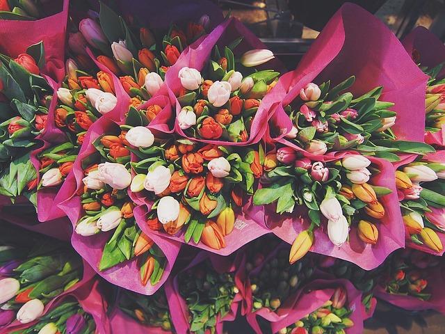 kytice tulipánů.jpg