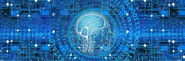 programování a mozek